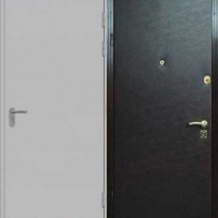Стальная дверь с простым окрасом и винилискожей