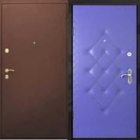 Металлическая дверь с порошковым напылением и винилискожей с рисунком