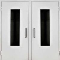Стальная техническая дверь с порошковым покрытием и стеклом с 2-х сторон